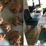 Debakel in der Küche